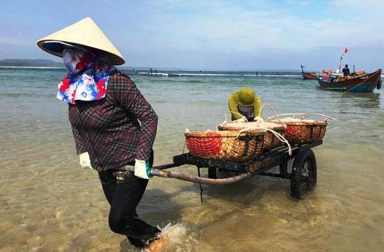 Cận Tết, ngư dân Quảng Ngãi trúng đậm mùa ruốc - Ảnh 1.