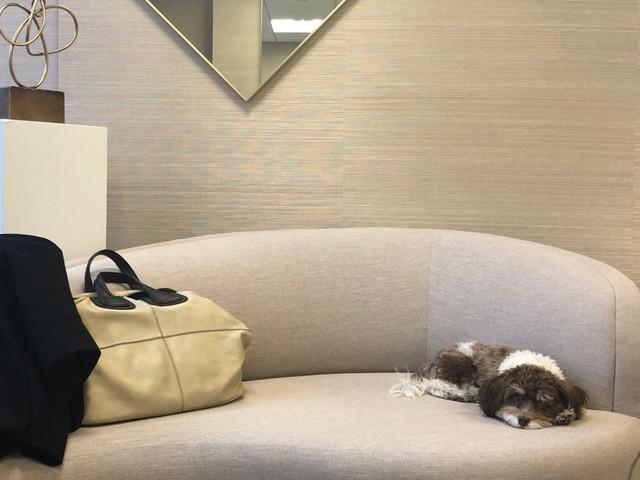 Nữ CEO thiết kế nội thất cho Ivanka Trump và Kim Kardashian: 9h sáng ngủ dậy, 10h đủng đỉnh đi làm, nhưng xử lý công việc thì miễn bàn! - Ảnh 13.