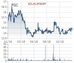 Gas Petrolimex (PGC) đặt mục tiêu lãi trước thuế 190 tỷ đồng trong năm 2019 - Ảnh 1.