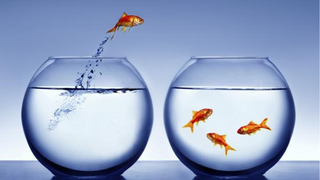 Nguyên nhân không ngờ khiến bạn luôn cảm thấy công việc bế tắc và 5 bí quyết vạn năng để vượt qua giai đoạn khó khăn!  - Ảnh 2.