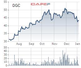 Bột giặt và Hóa chất Đức Giang (DGC) thông qua tạm ứng cổ tức tổng tỷ lệ 25% - Ảnh 1.