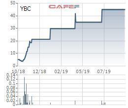 Xi măng và Khoáng sản Yên Bái (YBC) triển khai phát hành gần 3 triệu cổ phiếu cho Nhà đầu tư chiến lược - Ảnh 2.