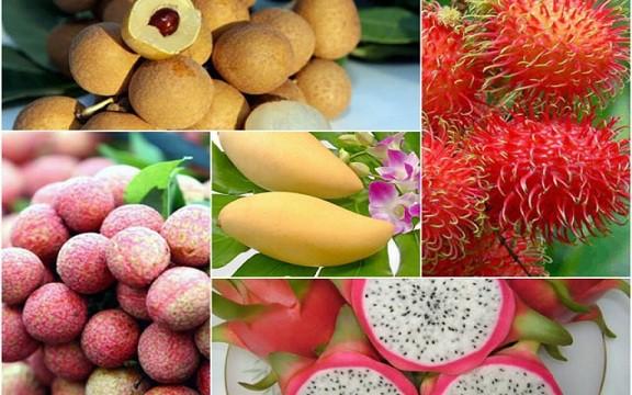 Chuyên gia kinh tế chỉ ra nhiều điểm nghẽn của nông sản Việt - Ảnh 1.