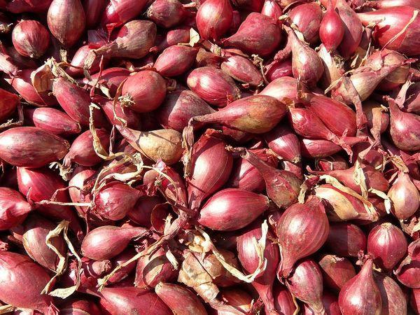 7 lợi ích sức khỏe không ngờ của hẹ tây mà lâu nay chúng ta chưa biết để tận dụng - Ảnh 2.