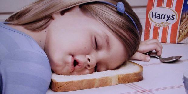 """Ngủ quá nhiều có thể khiến bạn trở thành """"não cá vàng"""" - Ảnh 4."""
