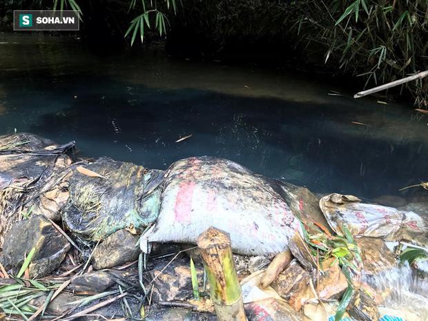 Nhân chứng kể việc phát hiện dầu thải đổ trộm xuống suối đầu nguồn nhà máy nước sông Đà - Ảnh 3.