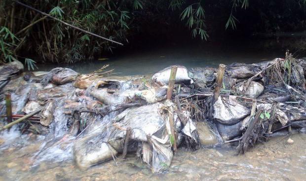 Nóng: Triệu tập một số người nghi đổ trộm chất thải gây ô nhiễm nguồn nước sạch sông Đà - Ảnh 2.