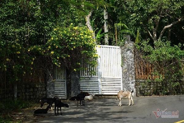 2 khu biệt thự ở bán đảo Sơn Trà bị đề nghị điều tra - Ảnh 2.