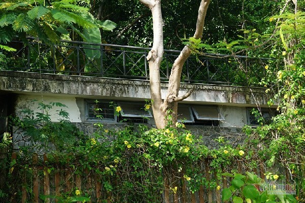 2 khu biệt thự ở bán đảo Sơn Trà bị đề nghị điều tra - Ảnh 5.