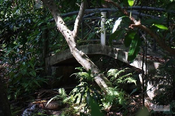 2 khu biệt thự ở bán đảo Sơn Trà bị đề nghị điều tra - Ảnh 6.
