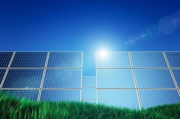 Bình Định thu hồi dự án điện mặt trời của Tập đoàn Ấn Độ - Ảnh 1.