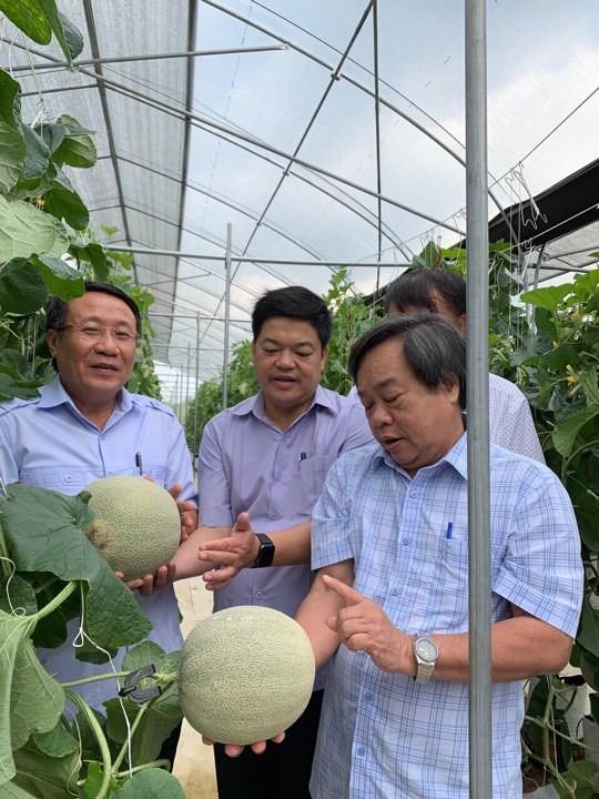 Nông nghiệp hữu cơ đâu chỉ phục vụ riêng giới nhà giàu - Ảnh 2.