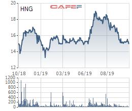 THACO muốn mua thêm 5 triệu cổ phiếu HAGL Agrico (HNG), tăng tổng sở hữu lên 36% vốn - Ảnh 1.