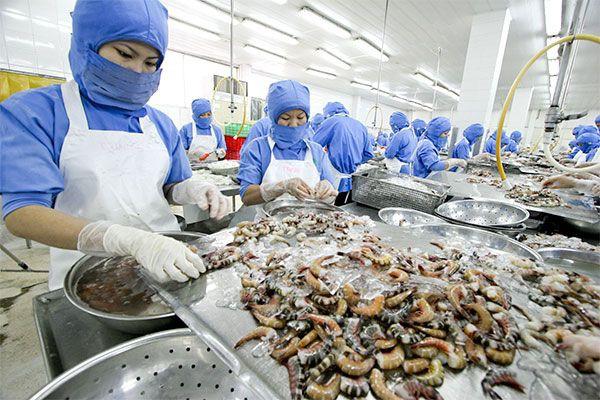 Việt Nam mới thoát nghèo, năng suất lao động thấp, có nên tính chuyện giảm giờ làm? - Ảnh 2.