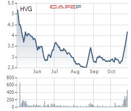 Cổ phiếu tăng 53% sau 2 tuần, Thủy sản Hùng Vương báo lỗ hợp nhất 242 tỷ đồng trong quý 4 niên độ tài chính - Ảnh 2.