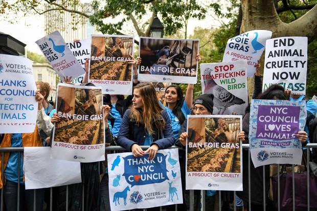 Món gan ngỗng nhà giàu xa xỉ chính thức bị cấm bán ở New York vì có hình thức nuôi nhốt quá tàn nhẫn - Ảnh 5.
