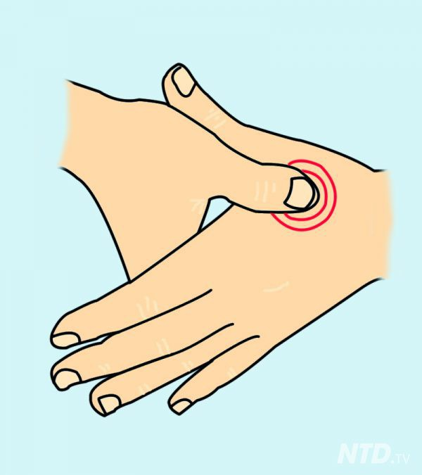 Chỉ cần ấn vào điểm này trên tay 1 phút, bạn sẽ cảm nhận rất nhiều điều kỳ diệu xảy ra với cơ thể - Ảnh 2.