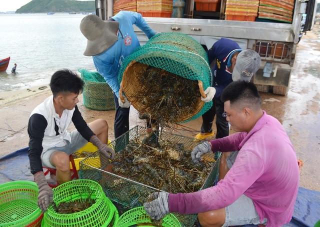 Trung Quốc đóng lối nhỏ, tôm cá rớt giá, dân Việt khóc ròng - Ảnh 1.