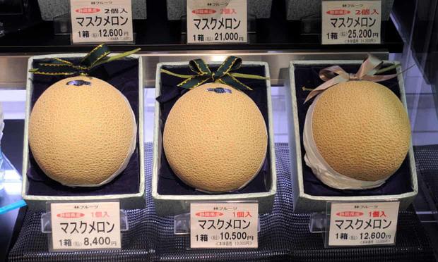 Câu chuyện đằng sau những trái dưa tiền tỉ của Nhật Bản: Căn nguyên từ tình yêu bất diệt của người trồng cây - Ảnh 1.