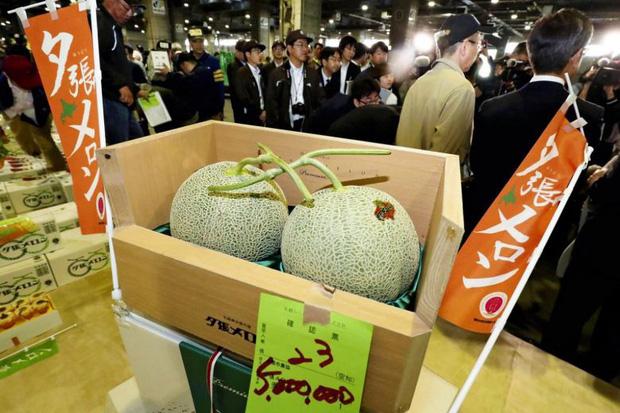 Câu chuyện đằng sau những trái dưa tiền tỉ của Nhật Bản: Căn nguyên từ tình yêu bất diệt của người trồng cây - Ảnh 2.