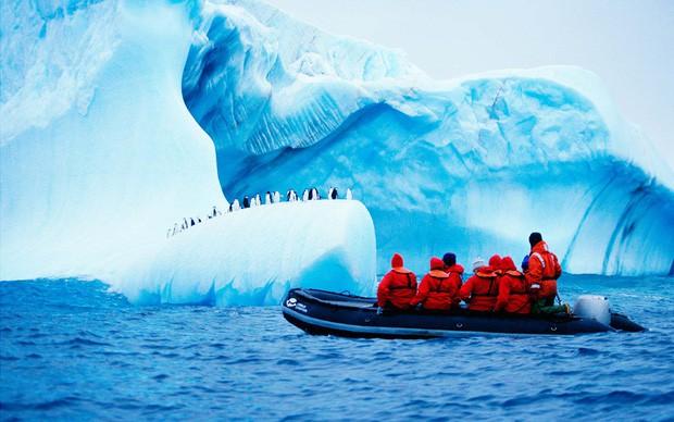Nam Cực đang trở thành điểm du lịch hút khách mới trong tương lai, nghe thì vui nhưng đó lại là 1 dấu hiệu đáng buồn cho Trái Đất - Ảnh 13.