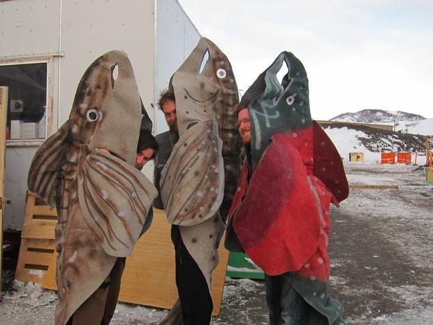 Nam Cực đang trở thành điểm du lịch hút khách mới trong tương lai, nghe thì vui nhưng đó lại là 1 dấu hiệu đáng buồn cho Trái Đất - Ảnh 6.