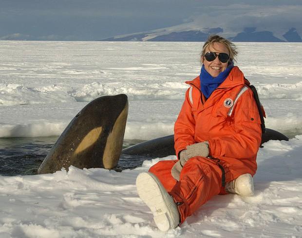 Nam Cực đang trở thành điểm du lịch hút khách mới trong tương lai, nghe thì vui nhưng đó lại là 1 dấu hiệu đáng buồn cho Trái Đất - Ảnh 9.