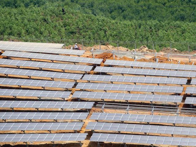 Giá điện mặt trời sẽ theo cơ chế đấu thầu - Ảnh 1.