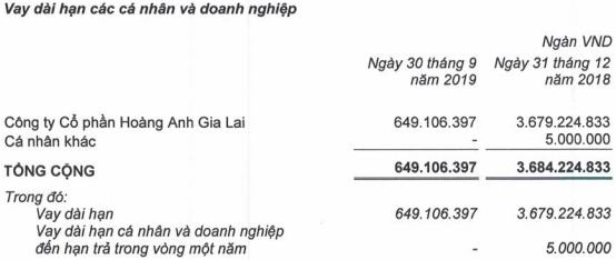 HAGL Agico (HNG) lỗ thêm 980 tỷ trong quý 3 do sự cố ngập lụt, chuyển đổi vườn cây… nâng lỗ luỹ kế lên 1.622 tỷ đồng - Ảnh 3.