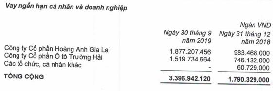 HAGL Agico (HNG) lỗ thêm 980 tỷ trong quý 3 do sự cố ngập lụt, chuyển đổi vườn cây… nâng lỗ luỹ kế lên 1.622 tỷ đồng - Ảnh 4.