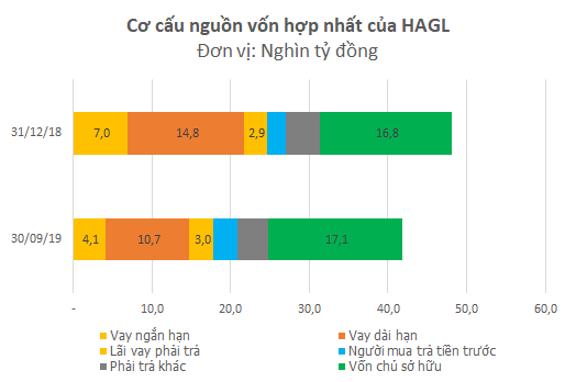 Bán đi một loạt khoản đầu tư, HAGL lãi ròng 714 tỷ đồng trong quý 3dù lợi nhuận trước thuế âm - Ảnh 2.