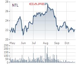 Cổ phiếu tăng bạo trước cơn sốt đất, nhiều doanh nghiệp bất động sản vẫn làm ăn lèo tèo, thậm chí thua lỗ - Ảnh 3.