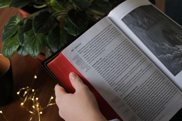 Bạn thích mua sách nhưng không bao giờ đọc hết chúng, vậy làm thế nào để đọc ít mà vẫn biết nhiều, thông minh lên? - Ảnh 2.