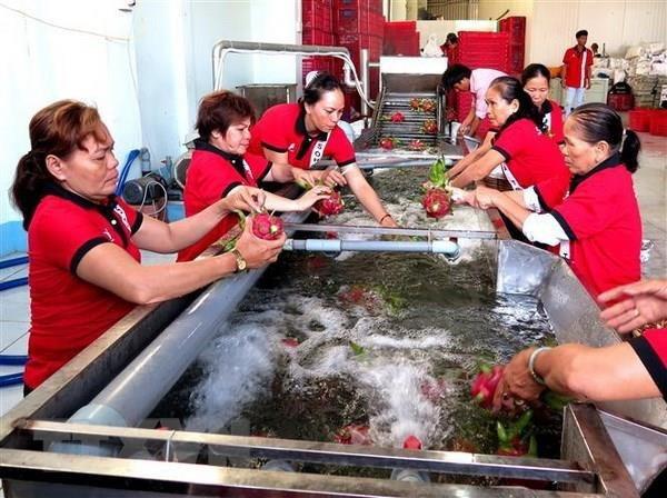 Nông nghiệp Việt đặt mục tiêu xuất khẩu hơn 42 tỷ USD vào năm 2020 - Ảnh 1.