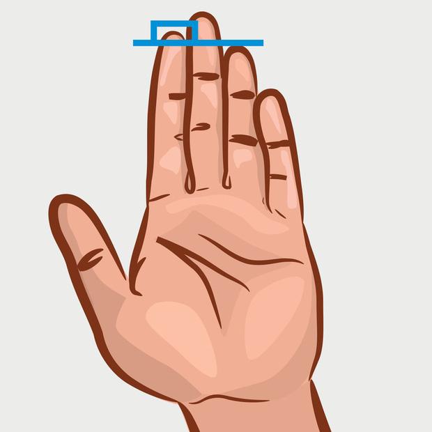 Chiều dài ngón trỏ và ngón đeo nhẫn tiết lộ sự thành đạt, khả năng làm lãnh đạo, ưu – khuyết điểm của bạn! - Ảnh 2.