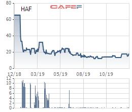Hapro muốn chuyển nhượng cổ phần tại một loạt các công ty con - Ảnh 1.