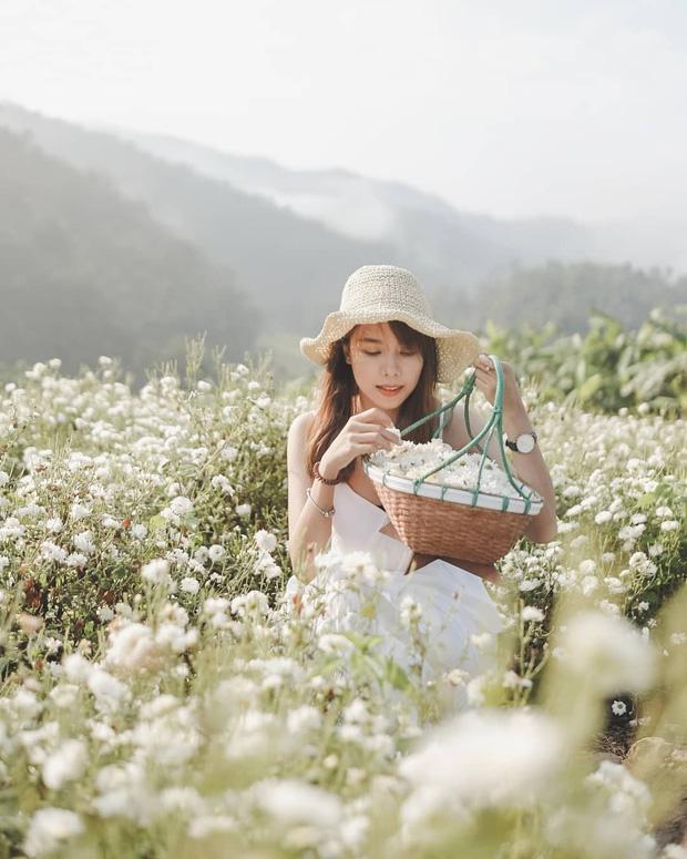 """Check in gấp ở 4 vườn hoa đẹp nhất Chiang Mai để biết vì sao nơi đây được mệnh danh là """"đóa hồng phương Bắc"""" của đất Thái - Ảnh 15."""