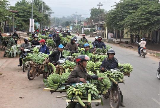 Nhộn nhịp chợ chuối vùng biên lớn nhất Quảng Trị - Ảnh 1.