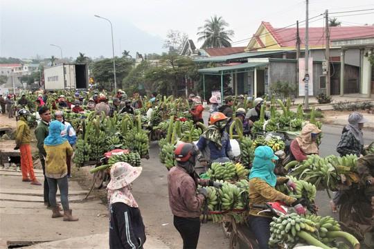 Nhộn nhịp chợ chuối vùng biên lớn nhất Quảng Trị - Ảnh 2.