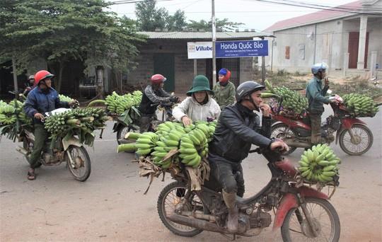 Nhộn nhịp chợ chuối vùng biên lớn nhất Quảng Trị - Ảnh 3.
