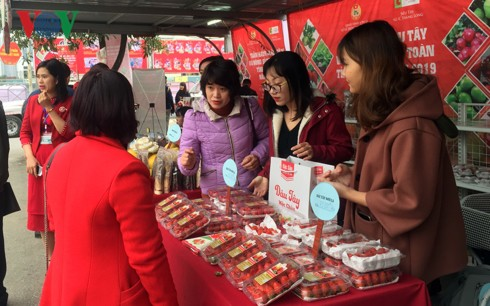 Các FTA mới và cơ hội cho ngành nông nghiệp Việt Nam - Ảnh 1.