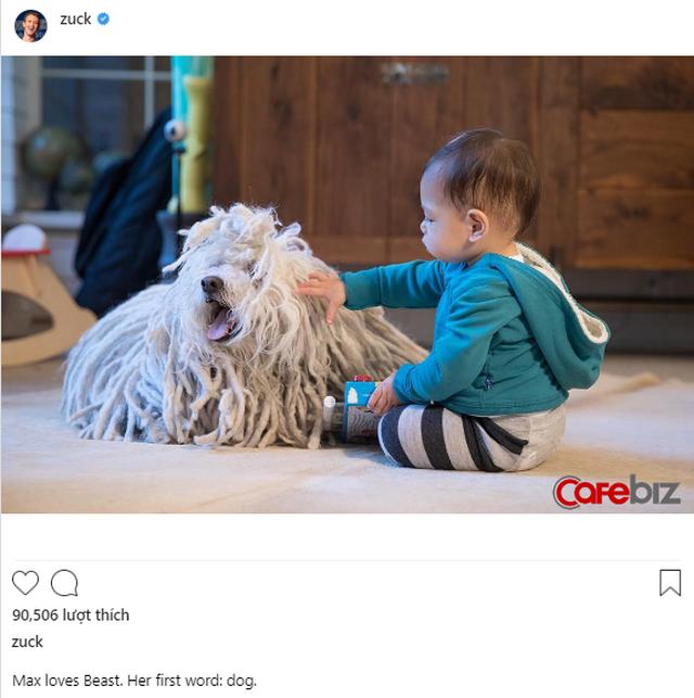 Chỉ với một động tác đơn giản, chú chó lông xù của Mark Zuckerberg đã giúp Facebook chốt deal mua WhatsApp trị giá 19 tỷ USD chỉ sau có vài giây - Ảnh 1.