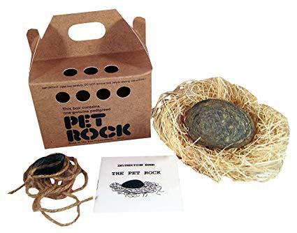 Phụ huynh đau đầu việc nuôi thú cưng của con trẻ? Đã có thú cưng đá Pet Rock, không cần đồ ăn, khỏi lo dọn phân: Case study bán hàng kinh điển nhất của thế kỷ 20 - Ảnh 4.