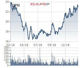 Lãi lớn, Đạm Phú Mỹ tạm ứng trước 5% cổ tức cho năm 2018 - Ảnh 1.