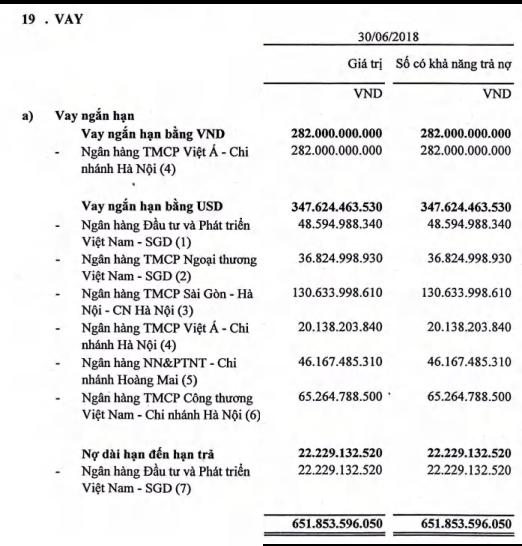 Lỗ 440 tỷ trong 4 năm với nợ quá hạn vài trăm tỷ đồng, công ty cũ TH1 của Shark Vương lần lượt bị Vietinbank và BIDV rao bán nợ - Ảnh 2.