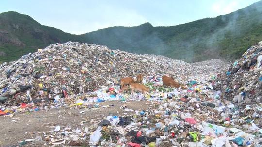 Chi hơn 35 tỉ đồng, chuyển 70.000 tấn rác từ Côn Đảo về đất liền xử lý - Ảnh 5.
