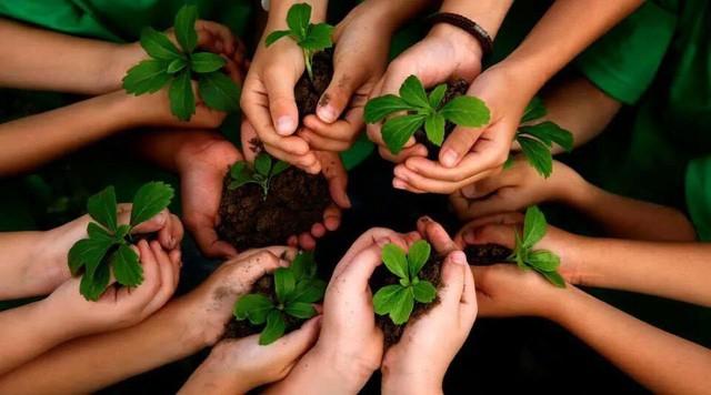 Không có thứ lòng tốt mang tên nghĩa vụ, hiển nhiên: Hãy mài sắc lòng tốt của bạn nếu không muốn bị người khác lợi dụng - Ảnh 1.