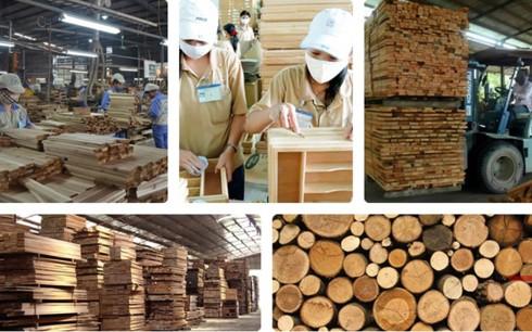 Vào CPTPP, doanh nghiệp gỗ Việt phải thay đổi tư duy kiếm tiền - Ảnh 1.