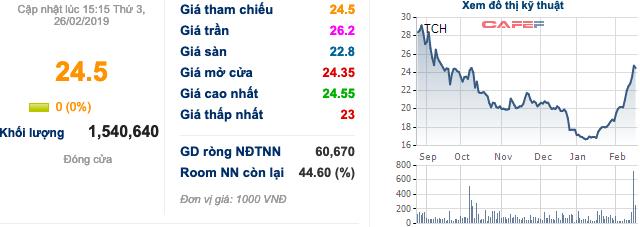 Tài chính Hoàng Huy (TCH) đầu tư dự án bất động sản hơn 2.020 tỷ đồng - Ảnh 2.