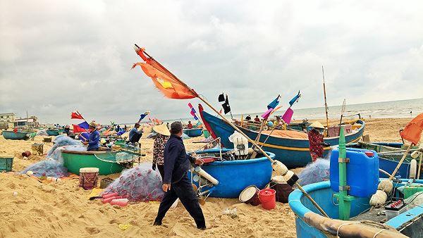Ngư dân Vũng Tàu trúng đậm lộc biển đầu năm - Ảnh 12.